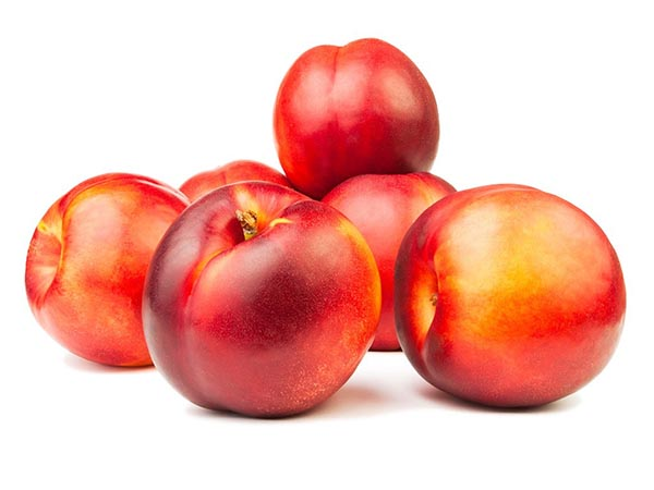 nectarin-export