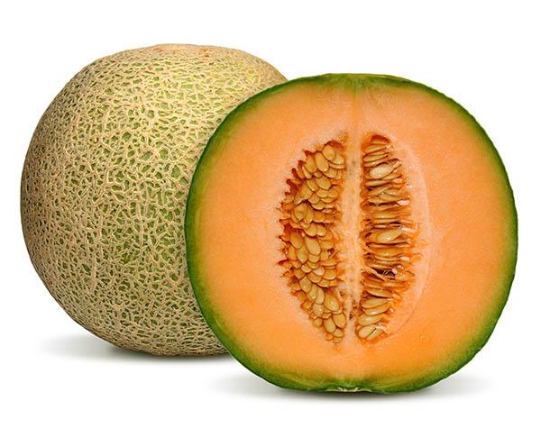 melon-export