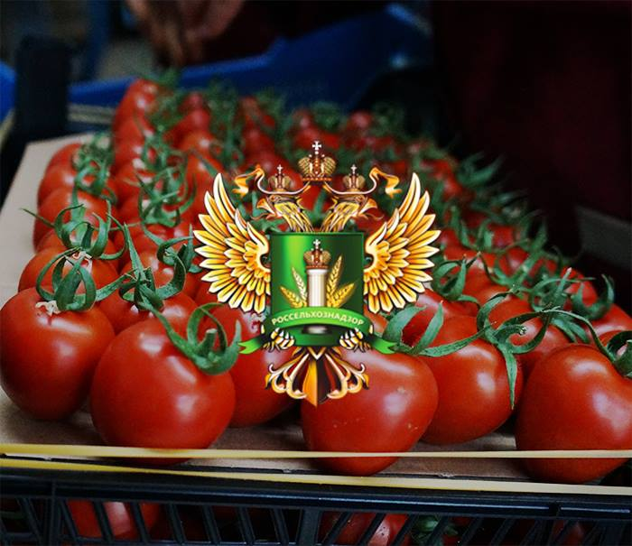 Russia Removes Restrictions On Imports Of Turkish Tomatoes